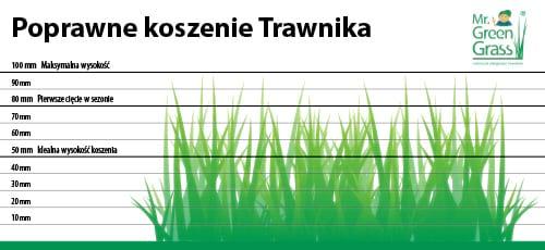 jak poprawnie kosić trawę