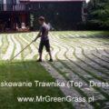 piaskowanie-trawnika-3