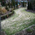 piaskowanie-trawnika-4